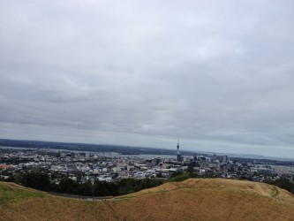 Mt Eden view